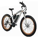 HSART-Bicicletta-Elettrica-da-1000W-Bici-Elettrica-26-Fat-Tire-48V-13Ah-Beach-Cruiser-Mountain-Bike-Sportiva-da-Uomo-Forcella-Ammortizzata-Freni-a-Disco-Idraulici-21-velocita