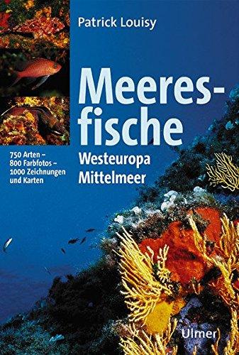 Meeresfische: Westeuropa und Mittelmeer