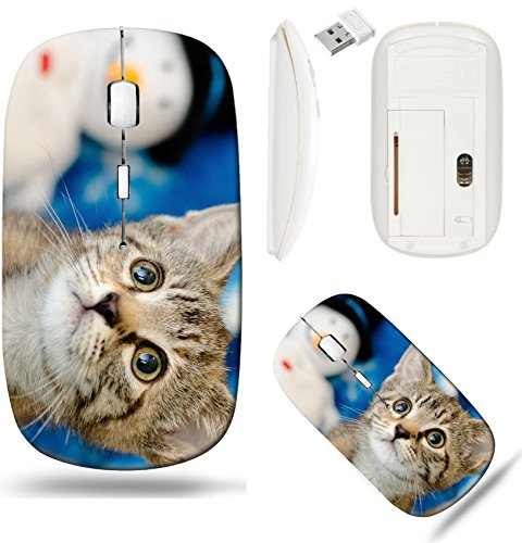 Liili Wireless Mouse White Base Travel 2.4G Wireless Mice with USB Receiver, Click with 1000 DPI for notebook, pc, laptop, computer, mac book ID: 26783402 tabby kitten on snowflake background looking