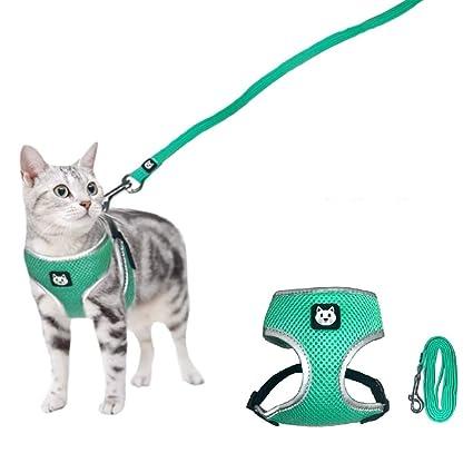 Amazon.com: Stock Show Arnés para mascotas con correa de ...