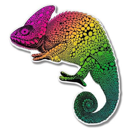 - Chameleon Colorful Vinyl Sticker - Car Window Bumper Laptop - SELECT SIZE