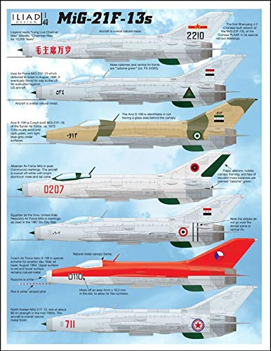 Amazon.com: Iliad MiG 21 F-13 / Shenyang J-7 / Avia S-106 (1 ...