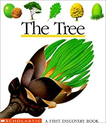 The Tree (First Discovery Book)