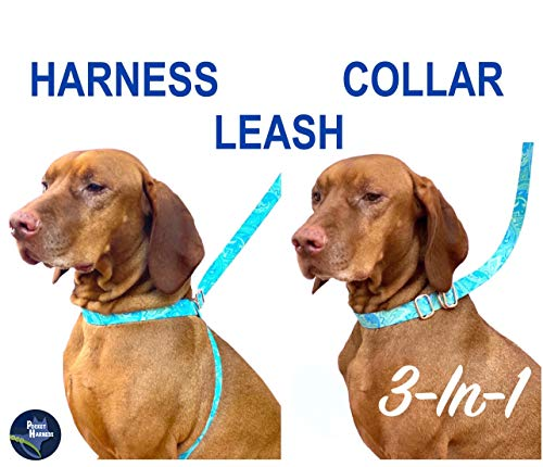 POCKETHARNESS Dog Harness + Collar + Leash | 3-In-1 | Stores Pocket | Perfect Fit Harness | Slip-On/ Off Collar | New Invention | Easy To Use | Pups All Size Dogs | Adjustable No Measuring | Made USA