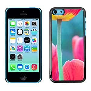 Caucho caso de Shell duro de la cubierta de accesorios de protección BY RAYDREAMMM - Apple iPhone 5C - Green Pink Spring Nature