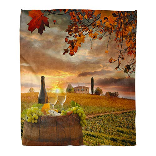 Emvency Throw Blanket Warm Cozy Print Flannel Red Cheese White Wine Barrel on Vineyard in Chianti Tuscany Italy Agriculture Comfortable Soft for Bed Sofa and Couch 60x80 Inches from Emvency