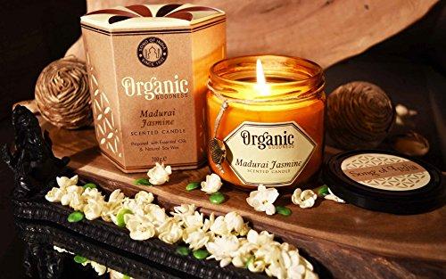 (Song of india Madurai Jasmine Creamy Organic Soy Wax & Beeswax Candle)