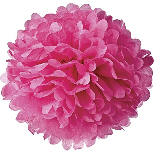 Lightingsky 10pcs DIY Decorative Tissue Paper Pom-poms Flowers Ball Perfect for Party Wedding Home Outdoor Decoration (10-inch Diameter, (Red Rose Tea Nursery)