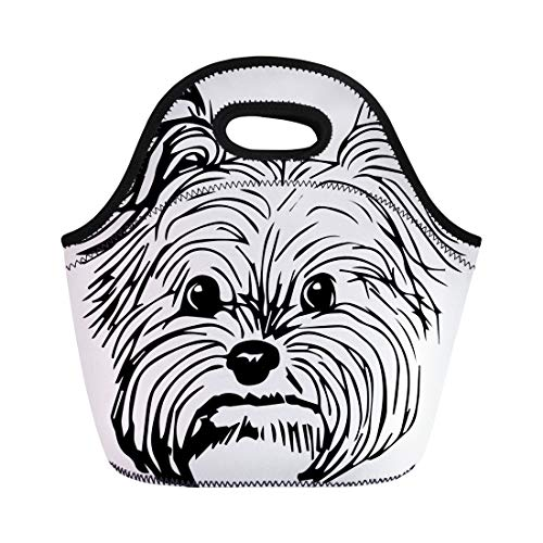 Semtomn Neoprene Lunch Tote Bag Club Yorkshire Terrier Dog Sketch Purebred Small Face Reusable Cooler Bags Insulated Thermal Picnic Handbag for Travel,School,Outdoors,Work