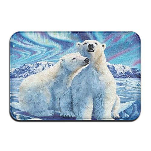 Huangwei 30x18inch Fantasy Sky Polar Bear Couple Non