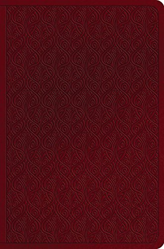 The Holy Bible: English Standard Version Value Compact Bible, Ruby, Vine Design, Trutone ()