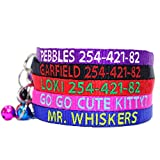 Go Go Cute Puppy Personalized Embroidered Nylon Cat Collar Break Away with Bell - Custom Text with Pet Name and Phone Number - Multiple Thread Colors and Sizes