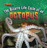 The Bizarre Life Cycle of an Octopus, Therese Shea, 1433970562