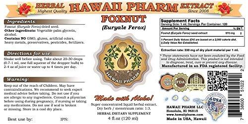 Foxnut (Euryale Ferox) Tincture, Organic Seeds Liquid Extract, Qian Shi, Herbal Supplement 4x4 oz by HawaiiPharm (Image #2)