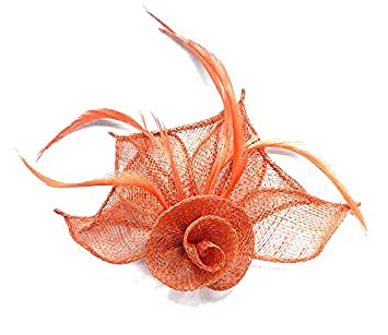 238a1059f13b7 Coral Red Beak Clip Fascinator Weddings Ladies Day Race Royal Ascot   Amazon.co.uk  Beauty