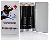 Bellofy 12 Drawing Pencils - Art Pencils Sketch Travel Set Artists Drawing Kit - 9B, 8B, 7B, 6B, 5B, 4B, 3B, 2B, B, HB, F, H - Precision Graphite Pencils for Adults & Kid Artists