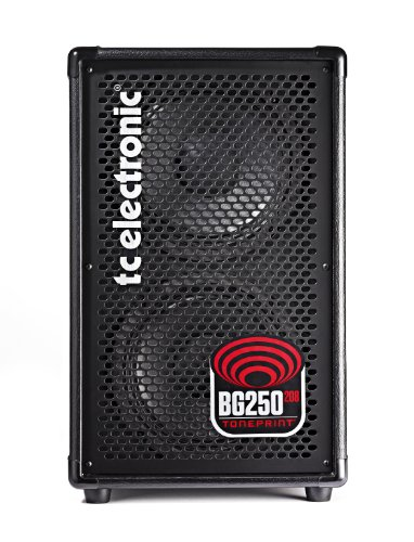 TC Electronic BG250-208 Bass Combo Amplifier