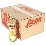 Penn ATP World Tour High Altitude Tennis Ball Case