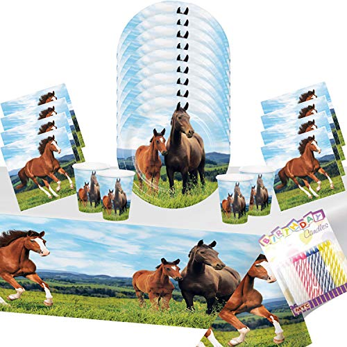 Horse and Pony Party Supplies Pack Serves-16: Dessert Plates, Beverage Napkins, Cups, and Table Cover with Birthday Candles: Deluxe (Bundle for 16) ()