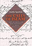 The Calls of Islam : Sufis, Islamists, and Mass Mediation in Urban Morocco, Spadola, Emilio, 0253011361