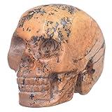 "Mineralbiz 1.3""-1.5"" Natural Picture Jasper Hand Carved Crystal Skull, Crystal Human Skull Head, Crystal Healing Reiki"