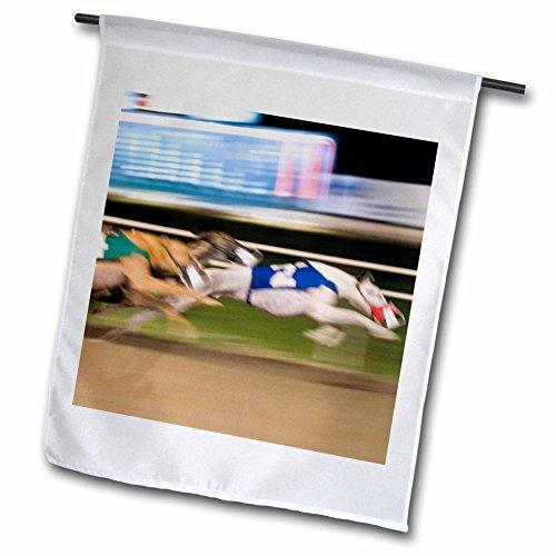 Greyhound Race - 3dRose fl_88112_1 West Memphis Arkansas Greyhound Races US04 MDE0002 Michael Defreitas Garden Flag, 12 by 18-Inch