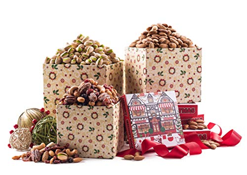 Benevelo Gifts 3 Tier Gourmet Nuts & Snacks Holiday Gift Set (Nuts and Dried Fruit)