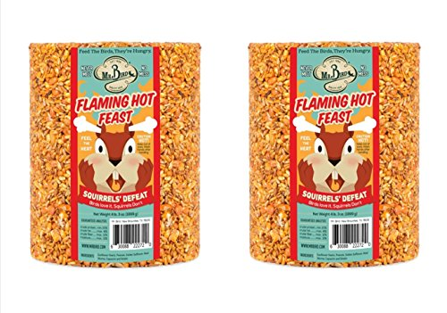 2-Pack of Mr. Bird Flaming Hot Feast Large Wild Bird Seed Cylinder 4 lb. 3 oz.