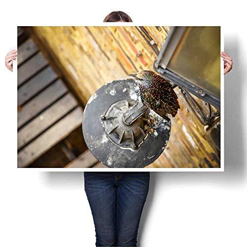 Home Decor Starling Bird Perching on a lamp at Camden Market Decorative Fine Art Canvas Print Poster K 36