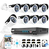 TECBOX 720P Home Security Camera System 8CH 2TB Surveillance DVR with 8 1.3mp Weatherproof CCTV Cameras Day and Night Remote View CCTV Security DVR System