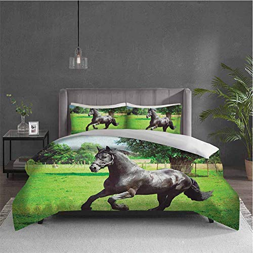 Dolores Edmund Horses Extra Large Quilt Cover Friesian Male Horse Masculine Driving Force of Life Power Inner Strength Symbol Can be Used as a Quilt Cover-Lightweight (King) Black Green (Power Braves Atlanta Balance)