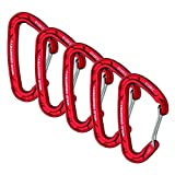 Wild Country Astro Karabiner 5 Pack Red Set