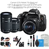 Canon EOS Rebel T6i Digital SLR Camera (Wifi Enabled) Creator Kit w/EF-S 18-55mm f/3.5-5.6 IS STM Lens + EF-S 55-250mm f/4-5.6 IS STM Lens + DigitalAndMore Deluxe Camera Cleaning Solution