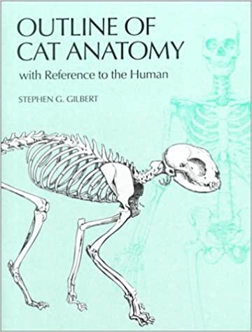 Amazon Outline Of Cat Anatomy With Reference To The Human 9780295978185 Stephen G Gilbert Cheralea Books
