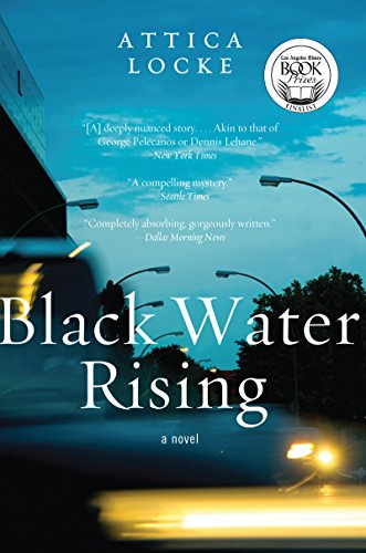 Black Water Rising: A Novel (Jay Porter Series) cover