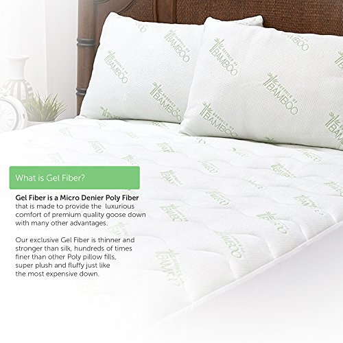 Essence Of Bamboo Derived Rayon Gel Fiber Pillows Down Import It All