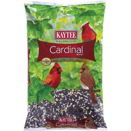 Kaytee Cardinal Blend, 7-Pound Bag, My Pet Supplies