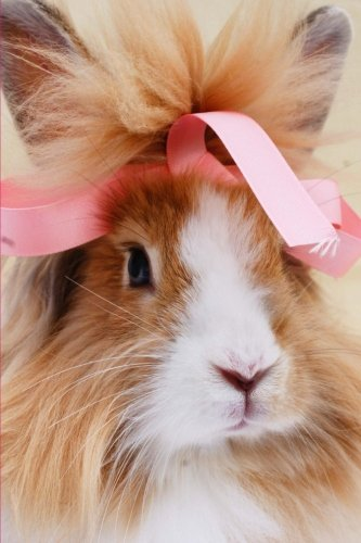 Fluffy Bunnies Pink (Fluffy Brown and White Bunny Rabbit with a Pink Bow Pet Journal: 150 Page Lined Notebook/Diary)