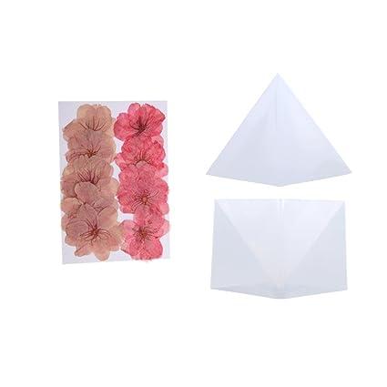 Baoblaze Molde Hecho de Silicon de Forma Esfera + 10pcs Flores Secas de Sakura para Marcadores