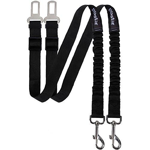 Pet Dog Leash - 9