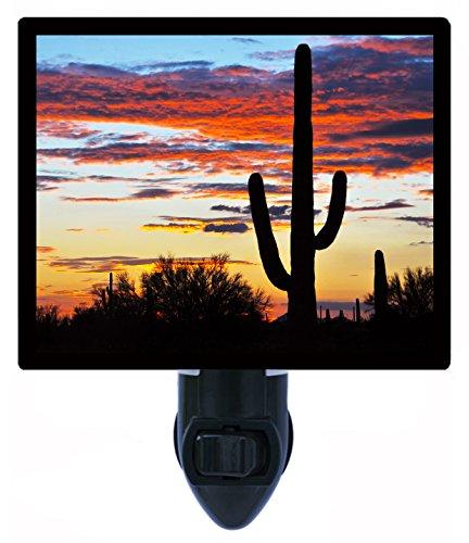 (Night Light, Hands Off, Saguaro Cactus, Southwest)