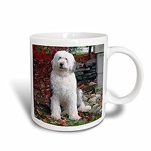3dRose Old English Sheepdog Mug, 15-Ounce 32