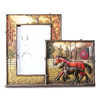 cadre photo cheval 21 cm