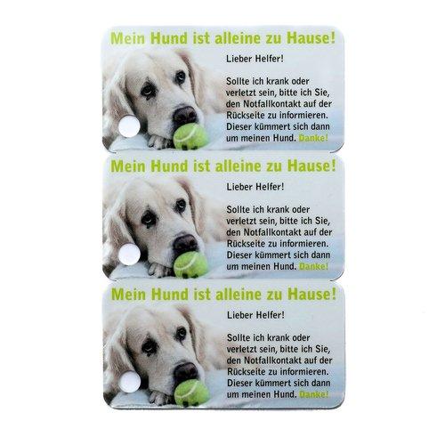 3er Set Notfallkarte Hunddesign, Schlü sselanhä nger Notfall zum beschriften, Labrador art decor