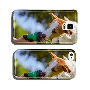 dog drinks water, spray cell phone cover case iPhone6