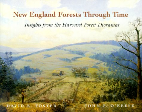 New England Forests Through Time : Insights from the Harvard Forest Dioramas -  David R. Foster, Paperback