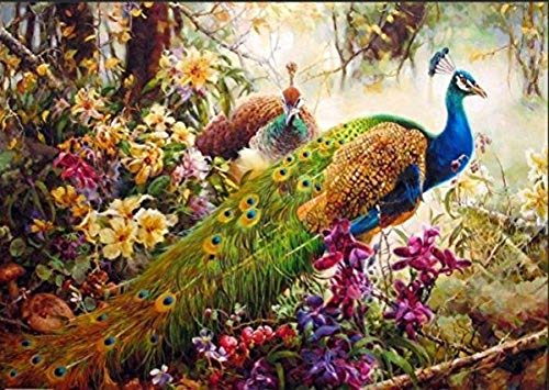 Cross Chart Welcome Stitch (YEESAM ART New DIY Paint by Numbers Kits for Adults Kids Beginner - Peacocks, Peafowl Trees Flowers Wild Animals Birds 16x20 inch Linen Canvas - Stress Less Number Painting Gifts)