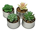 MelonLuchi Assorted Potted Artificial Succulents Plants Decorative Faux Fake Aloe Echeveria Planter Pots, Set of 4 (Metal Tin)