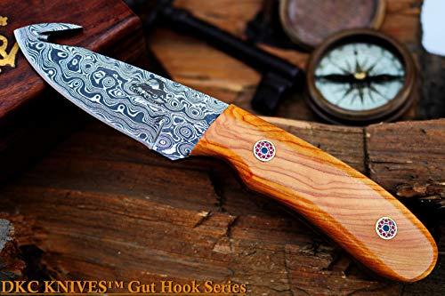 Knife Hook Bird - DKC-955-GH-DS Yaggy Trout & Game Damascus Steel Gut Hook Knife 7