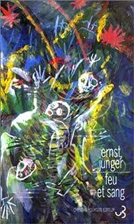 Feu et sang : bref épisode d'une grande bataille, Jünger, Ernst